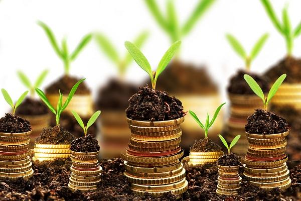 investir-dinheiro-